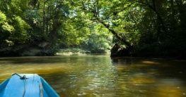Nationalpark Batang Ai