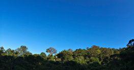 Naturpark in Selangor